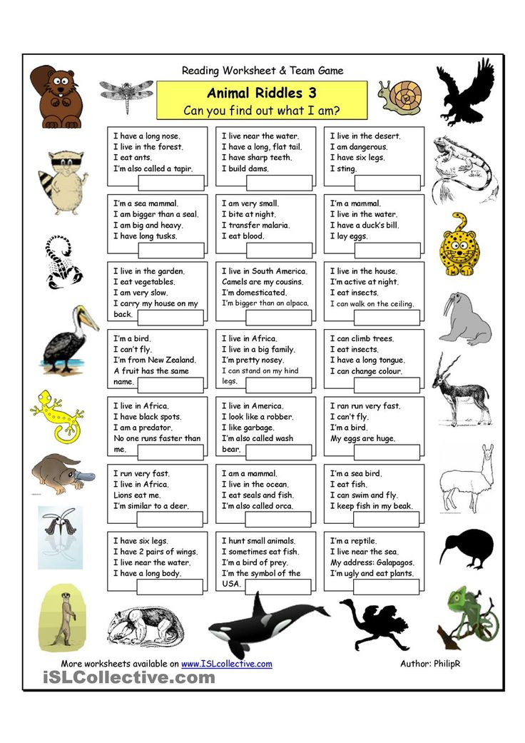 Animal Riddles 3 (Hard) riddles Pinterest Student