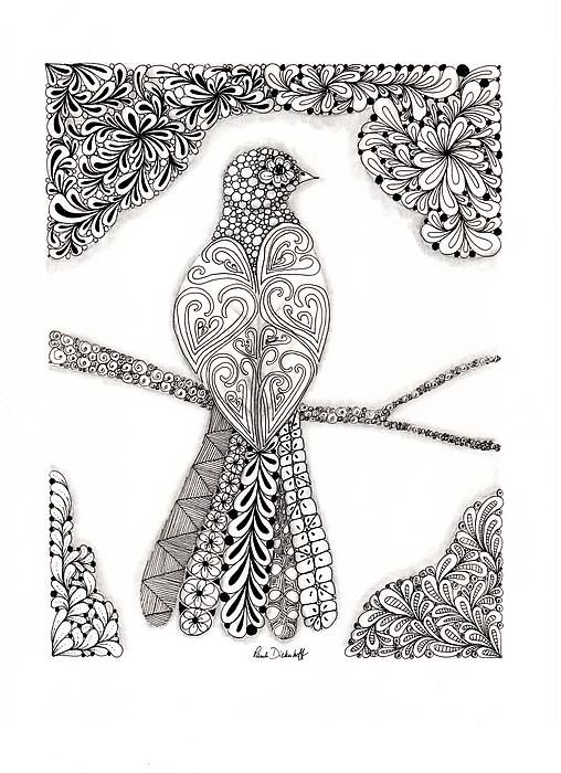 336 Best Images About Drawing And Zentangle Animals On Pinterest Animals Coloring And Cats
