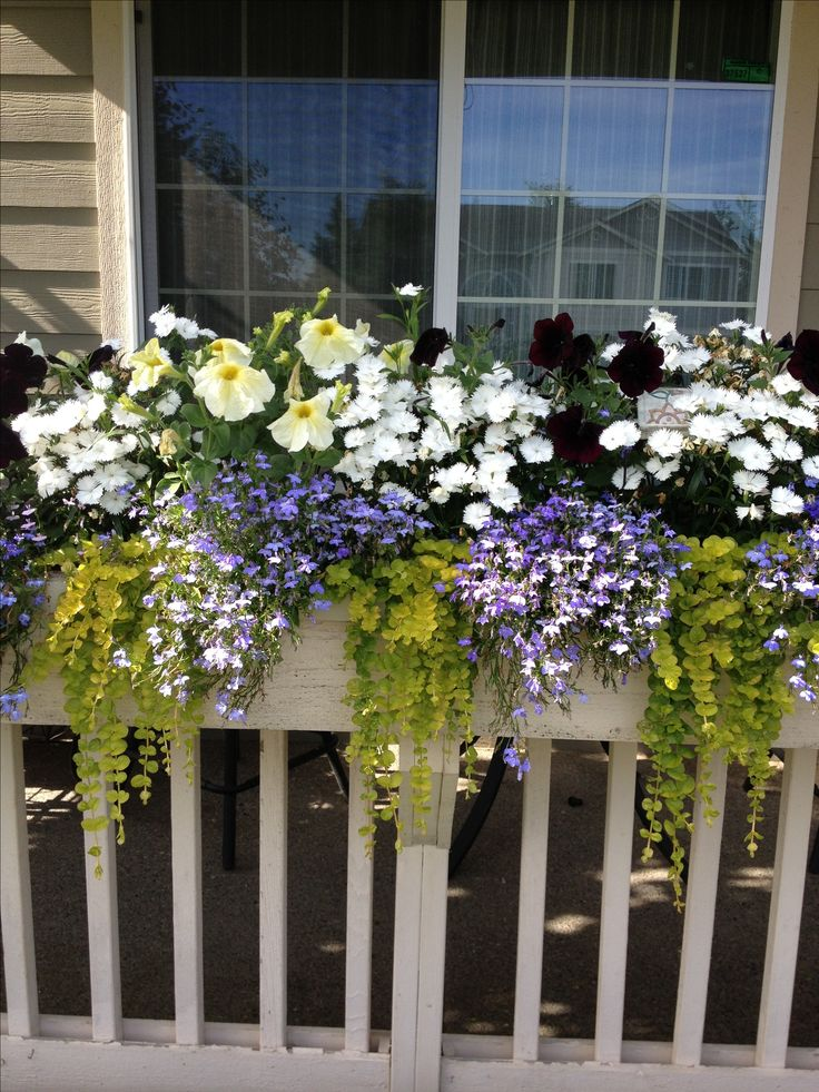 Front porch railing flower box garden/outdoors