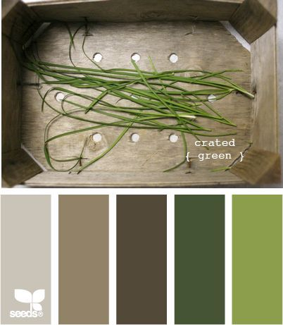 21 Best Images About Tuiss Loves Design Seeds On