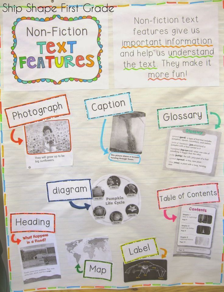 First Grade nonfiction text features anchor chart