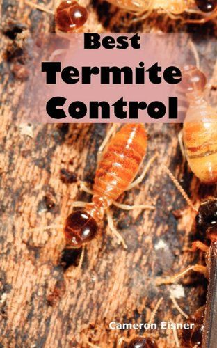 Termite Treatments The Homemade Way Need To Education