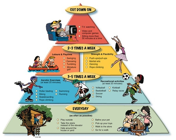 physical activity pyramid http//bit.ly/HiXlWJ P.E. and