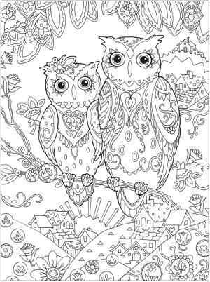 1000 ideas about owl coloring pages on pinterest colouring