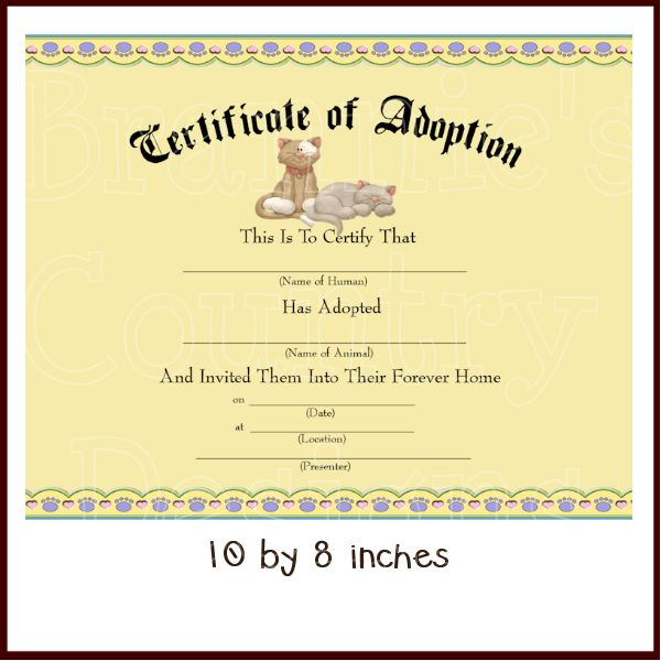 Fake Adoption Papers  Free Download