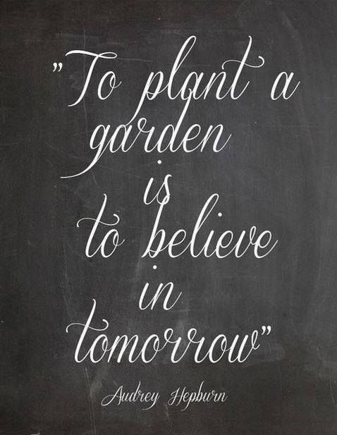 Motivational wallpaper with quote To plant a garden is to believe in tomorrow by Audrey Hepburn Motivational wallpaper with quote on Hope for tomorrow: To plant a garden is to believe in tomorrow