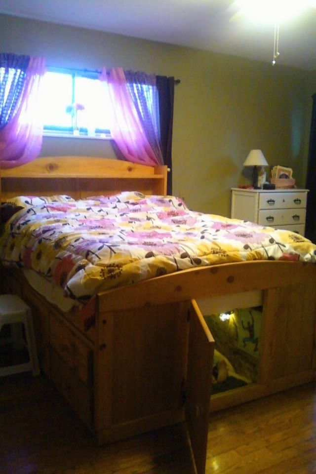 A Kid S Secret Bed For The Home Pinterest Beds And Kid