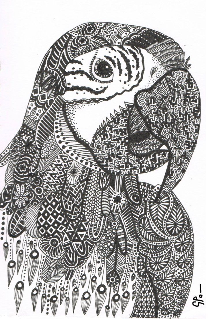 coloring zentangle parrot doodle zentangle coloring pages parrot