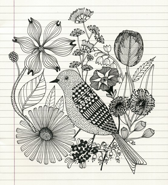 Pencil Sketch Of Bird And Flowers Making Art Pinterest