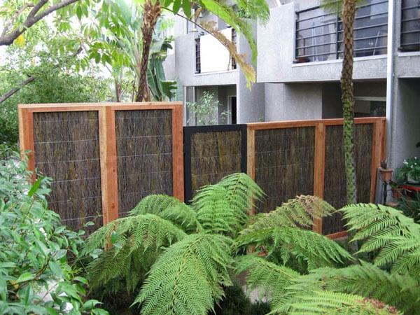 81 Curated Garden: Ideas For Privacy Screen. Ideas By