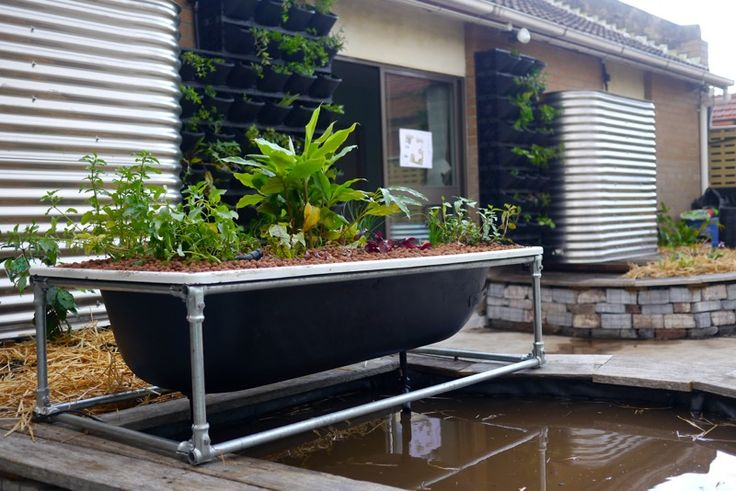 Bathtub Aquaponics Installed