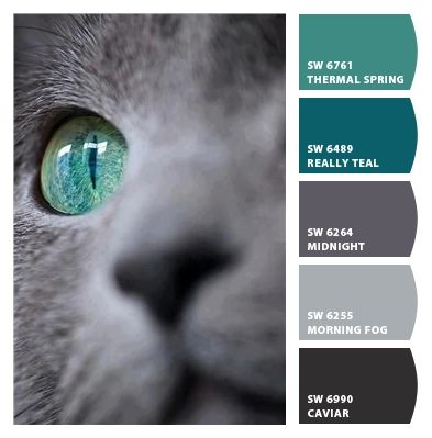 Cats Eye beautiful combo to incorporate with gray LOVE IT!!!!!!!!!!!