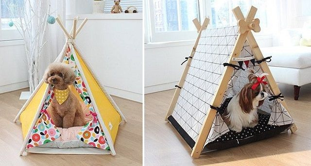 122 Best Images About Lily Mae On Pinterest Teepees For