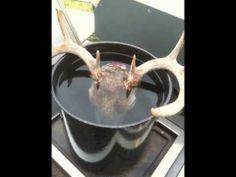 1000+ ideas about Homemade Deer Feeders on Pinterest ...