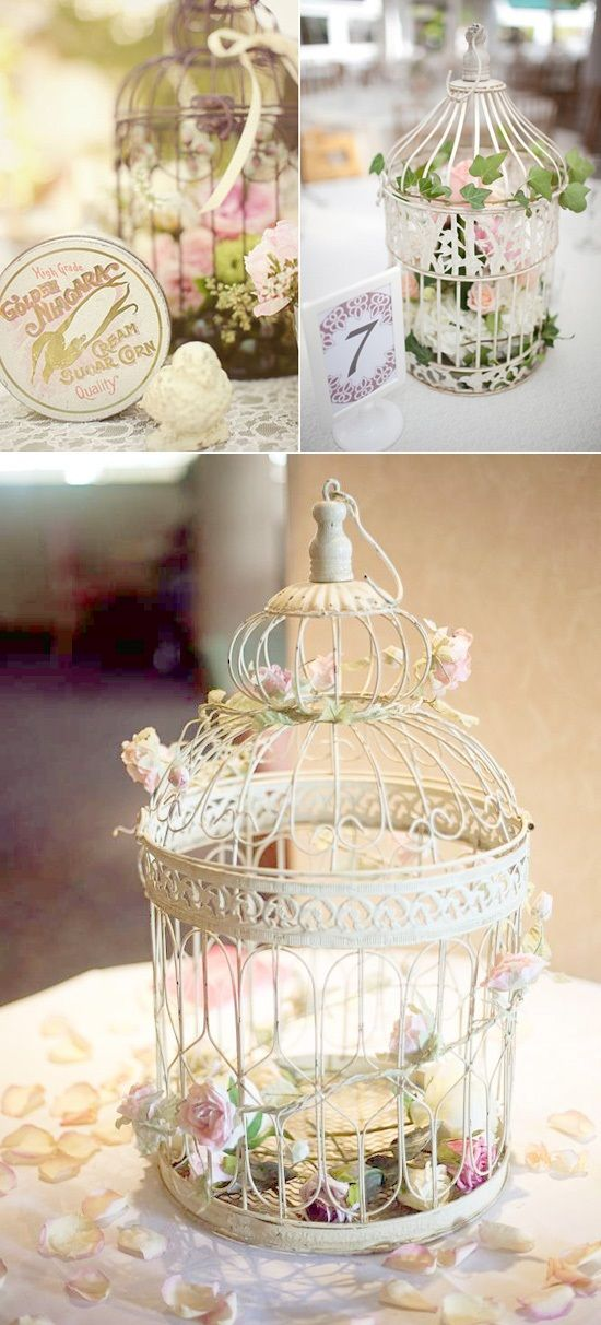 1000 Images About Bird Cage Flowers On Pinterest