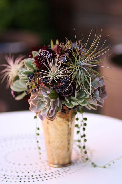 149 Best Images About Succulent Flower Arrangements