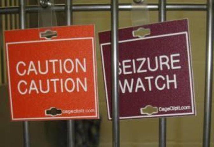 Adverse Vaccine Reaction Veterinary Cage Signs Building
