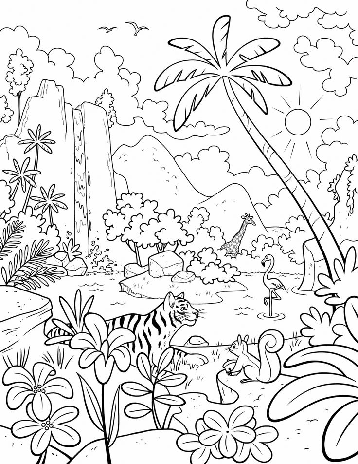 1000 ideas about creation coloring pages on pinterest days of