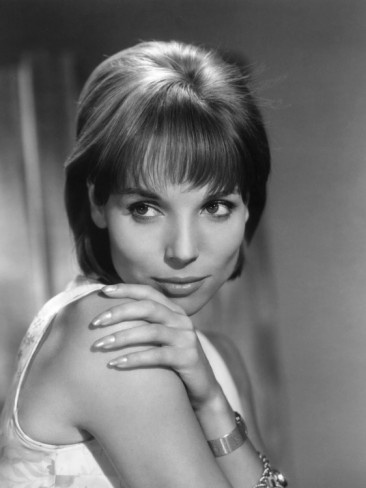Elsa Martinelli Actress Who Played The French Girl