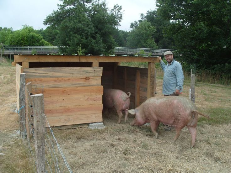 Pig Hut Time To Make The Bed With Max Helping Again In