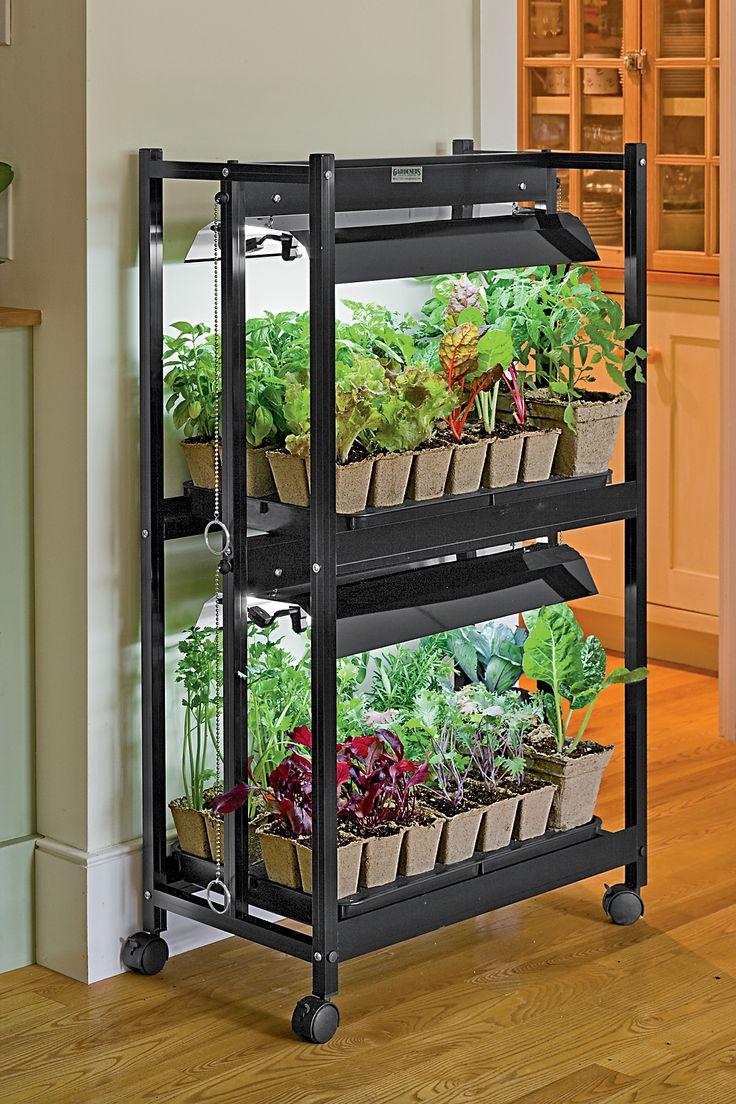 Indoor Vegetable Garden Tips, Starting Vegetable Gardens