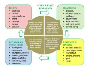 1000 images about Crop Rotation and Cover Crops on