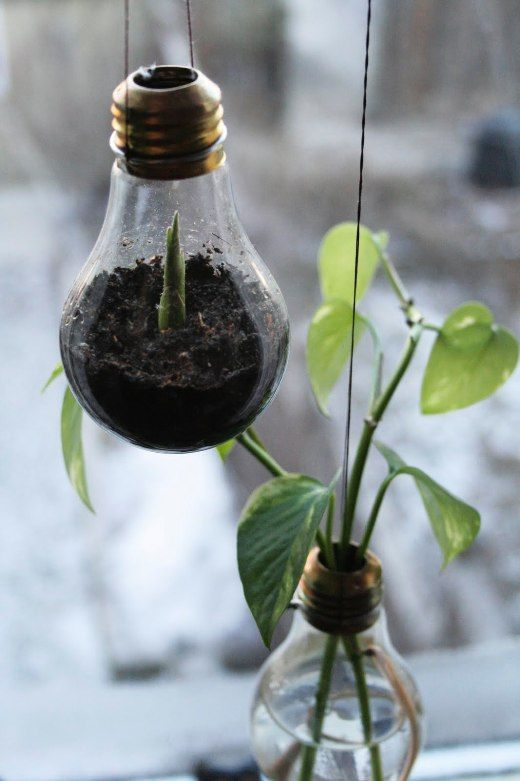 LOVE this idea!  So wish I would of thought this 100 burned out light bulbs ago!