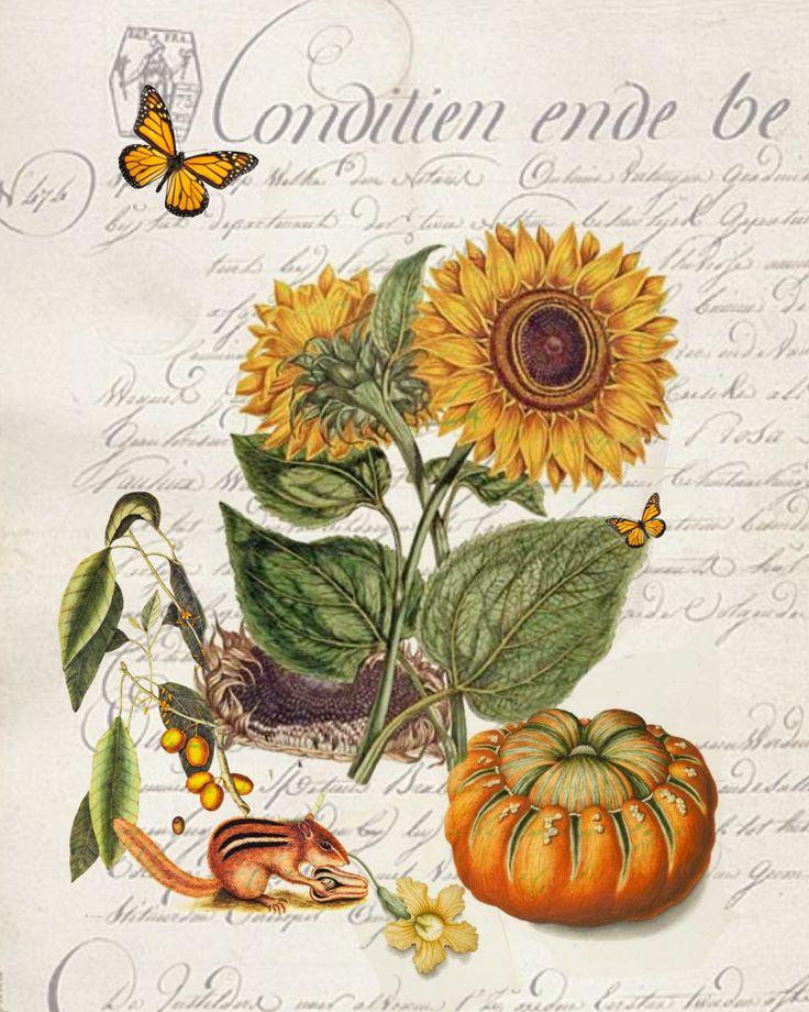 1000 Ideas About Sunflower Cards On Pinterest Heartfelt