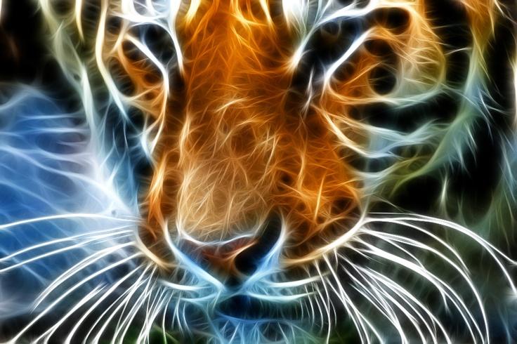 Kinda freaky. Neon Tiger by jamil ghanayem, via 500px