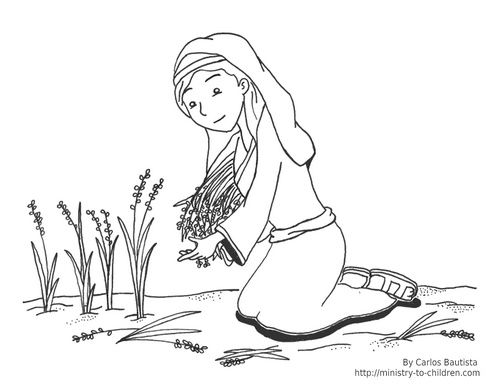 click here to download this ruth coloring page  sunday