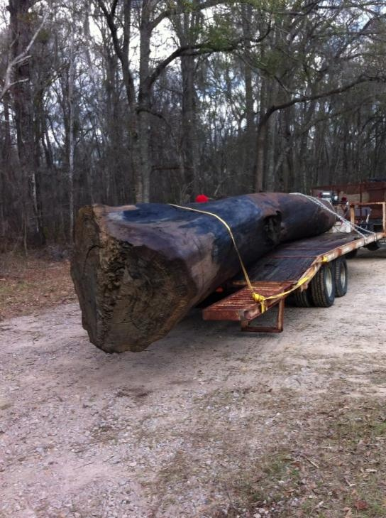 1000 Images About Heartwood Amp Sinker Recovery On