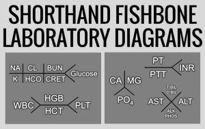 Shorthand Fishbone Laboratory Diagrams   Everything Nursing!   Pinterest   Studentcentered