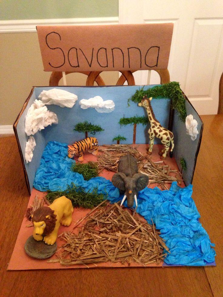 Savanna Biome Project School Stuff Pinterest 2!, All