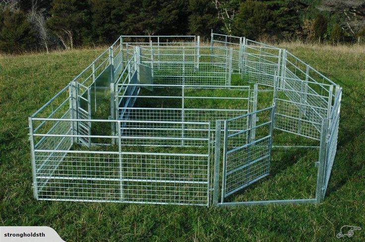 Sheep yard panels, gates and drafting race Trade Me