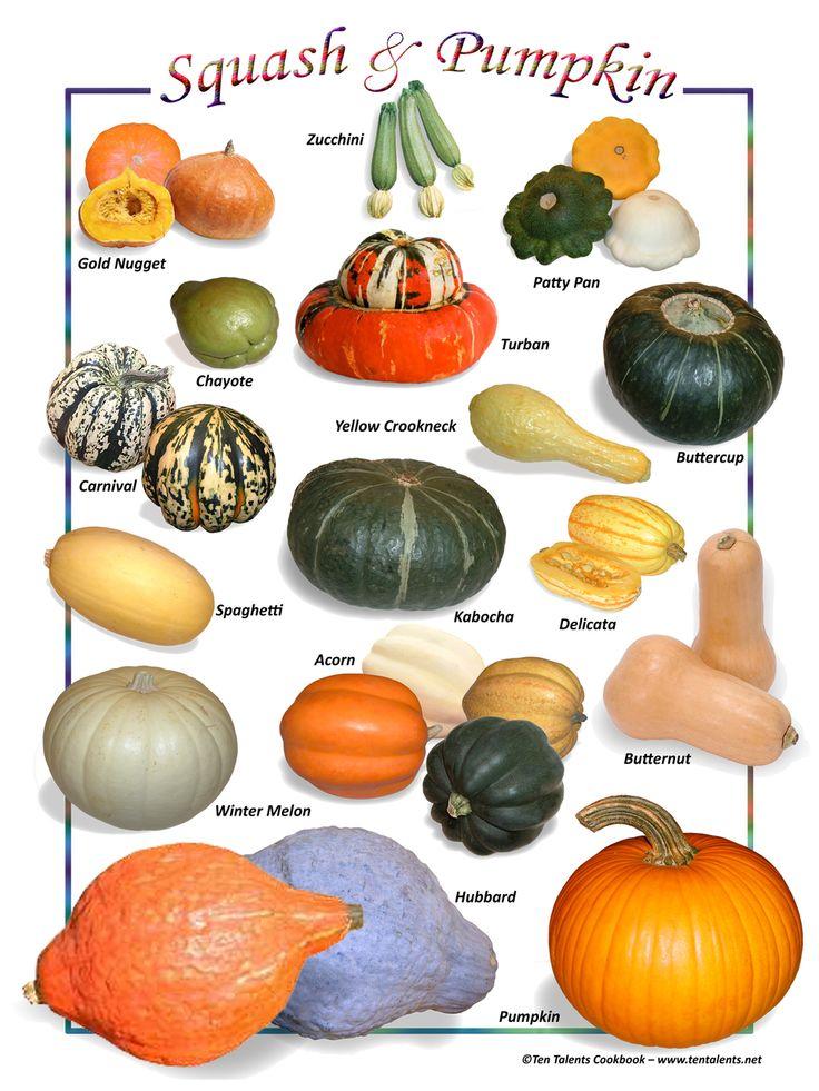 squash_and_pumpkin__35453.1403819834.1280.1280.jpg (960