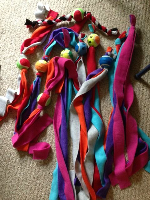 No Sew Fleece Dog Toys Misc Pinterest Dog Toys No