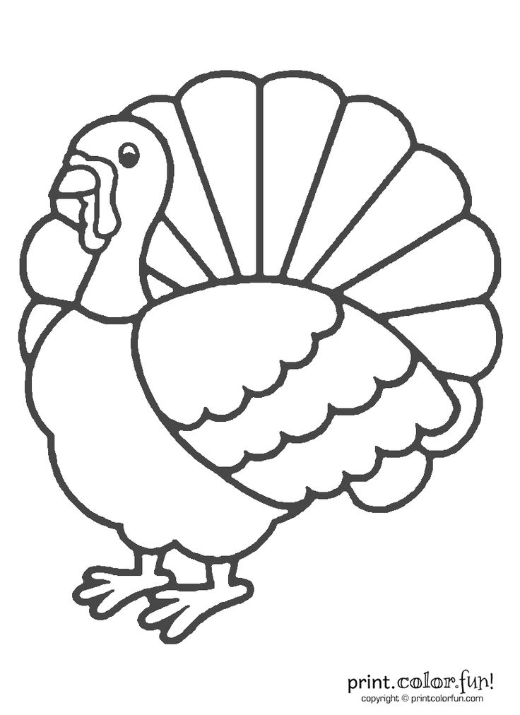 1000 ideas about turkey coloring pages on pinterest