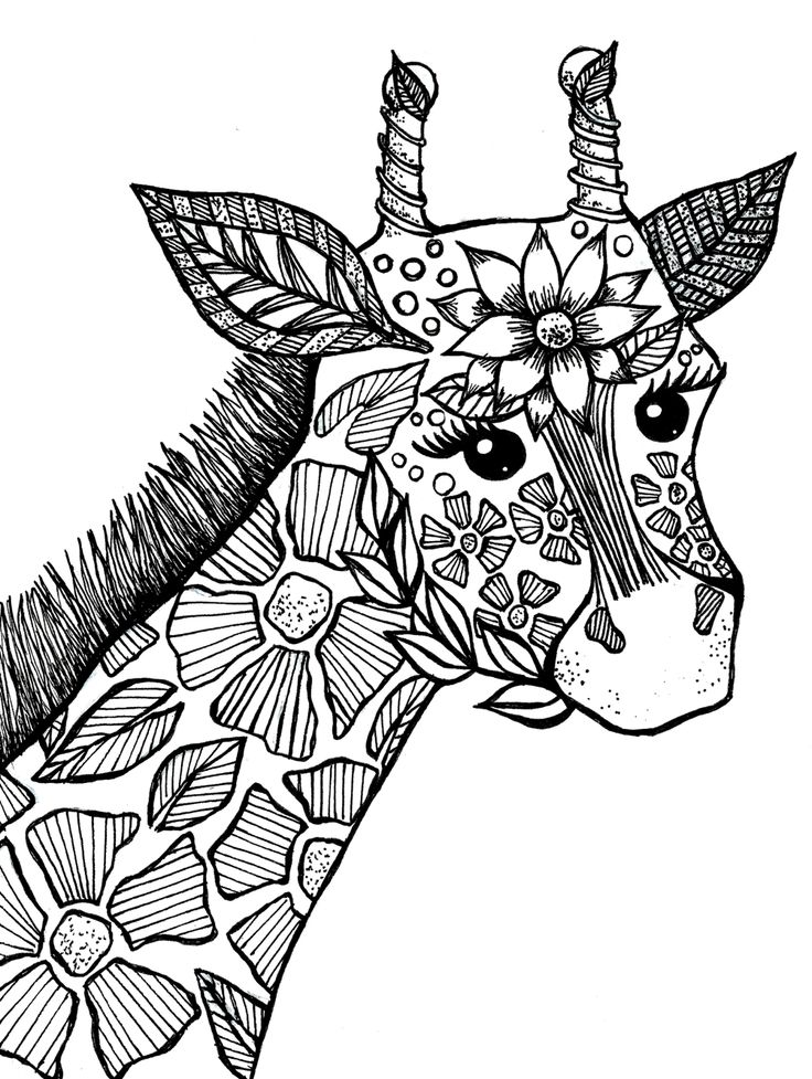 Giraffe Adult Coloring Book Page Drawings I've Made