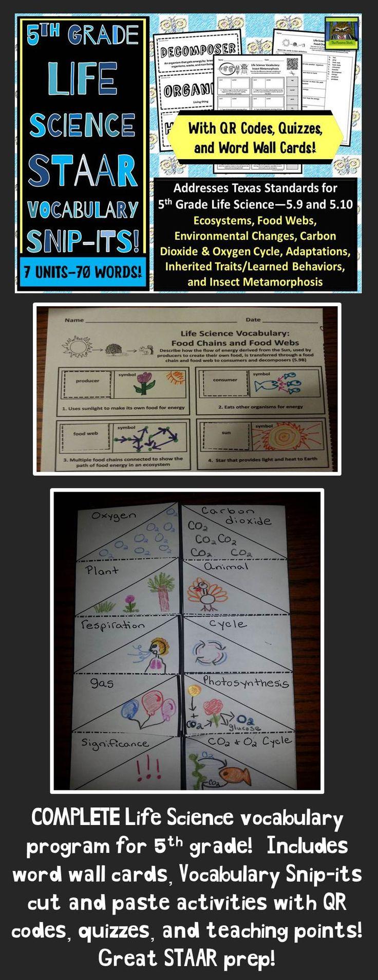 5th Grade Life Science STAARAdaptations, Food Webs
