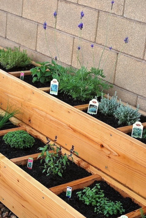 how to make a divided, raised herb garden bed Gardening