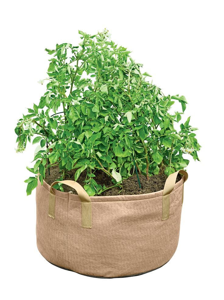 Jumbo Potato Grow Bag Buy from Gardener's Supply 2 for
