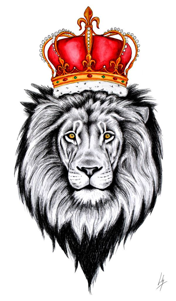 lion with crown drawing Google Search Tattoos Inspo
