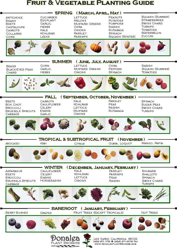 When to plant vegetables. Perfect for our soon to be new