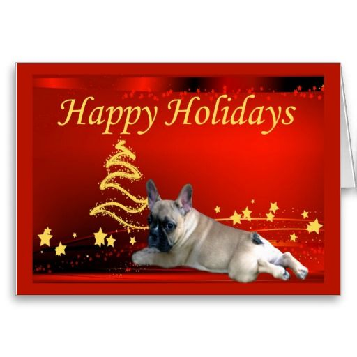 1000 Images About French Bulldog Christmas Cards On Pinterest