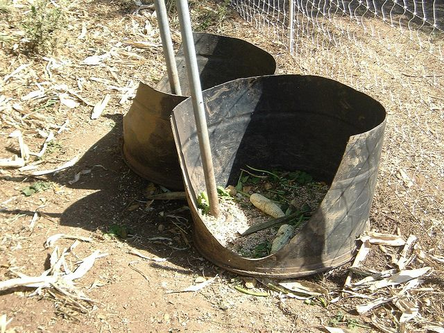 diy pig feeder, no more spilling or fighting I love this