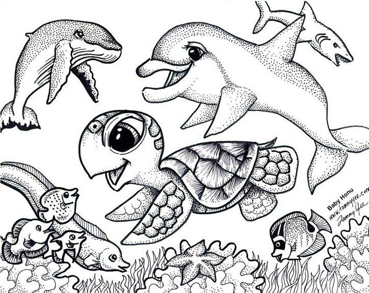 coloring pages for adults sea turtles and coloring pages on pinterest