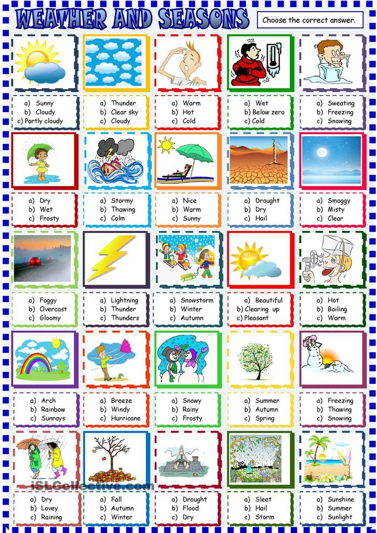 Weather and seasons multiple choice activity School time