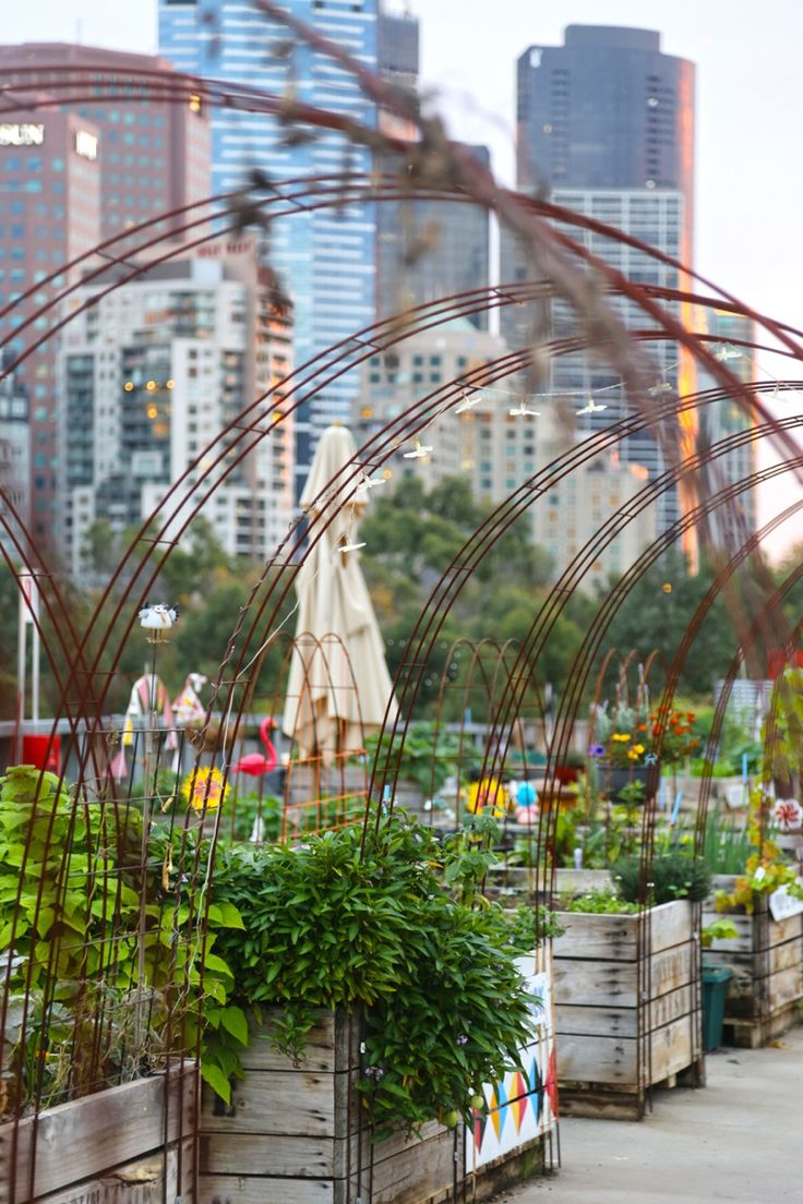 Rooftop community garden at Federation Square in Melbourne