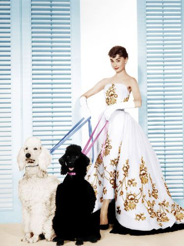 Audrey Hepburn in the couture dress from the Movie – Sabrina. Controversy around who designed the dress: Givenchy or famed costume