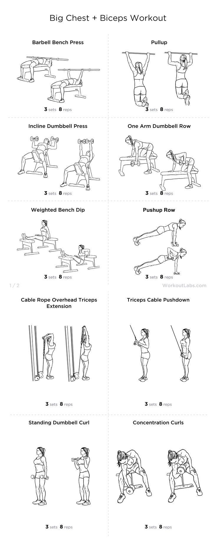 Big Chest + Biceps Workout Workouts! Pinterest
